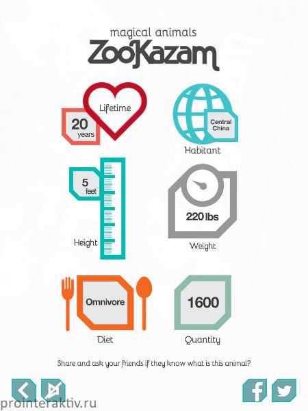 zookazam_05